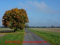 Radtour Oder-Nei�e-Radweg