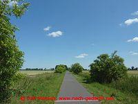 Oderbruchbahn-Radweg