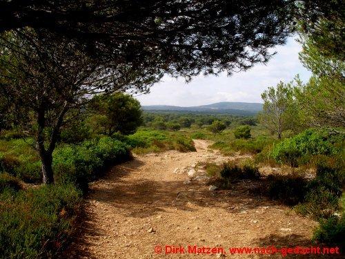 Entfernungsmesser Für Wanderer : Insel menorca die mola de fornells reisebericht auf www.nach